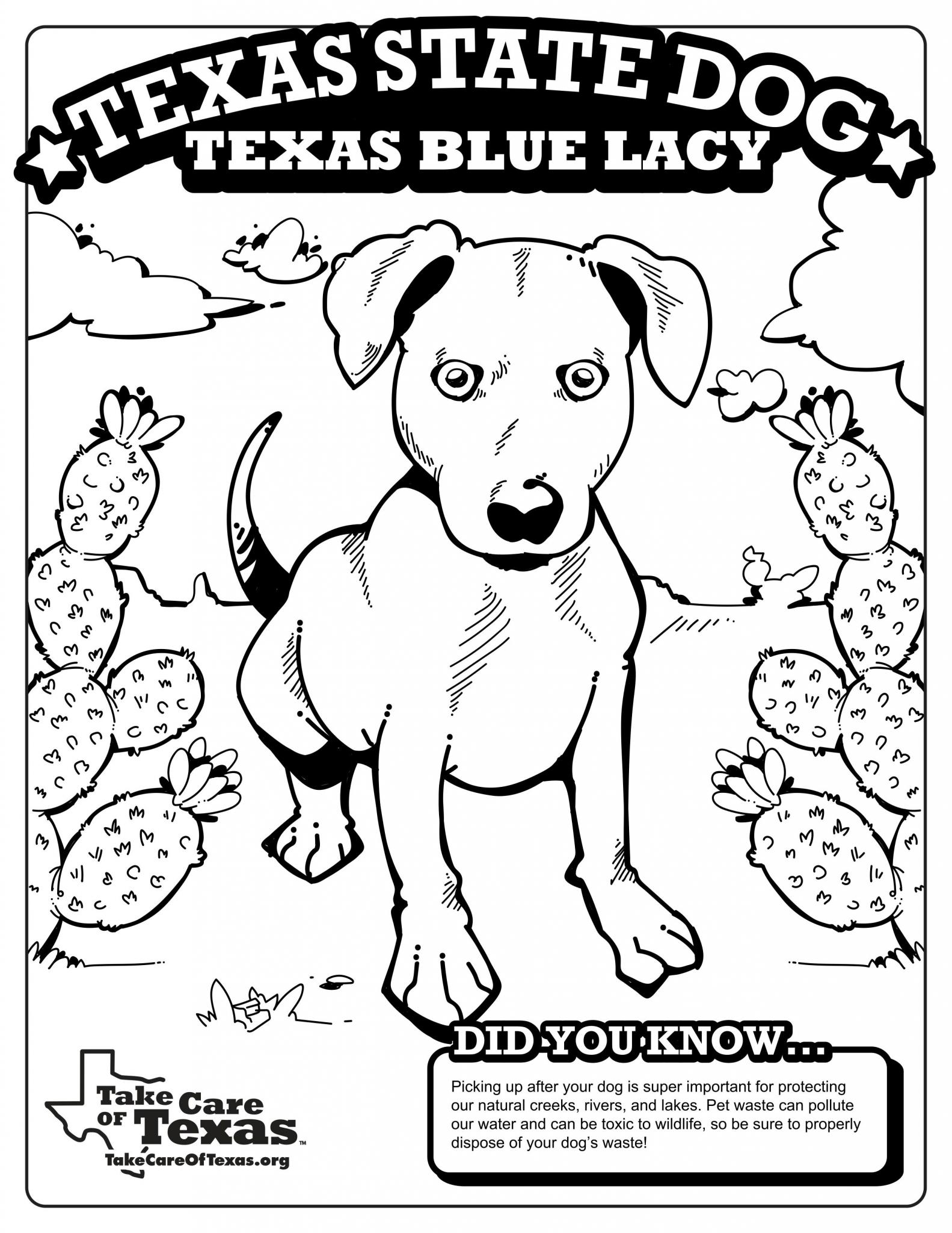 Blue Lacy Coloring Page
