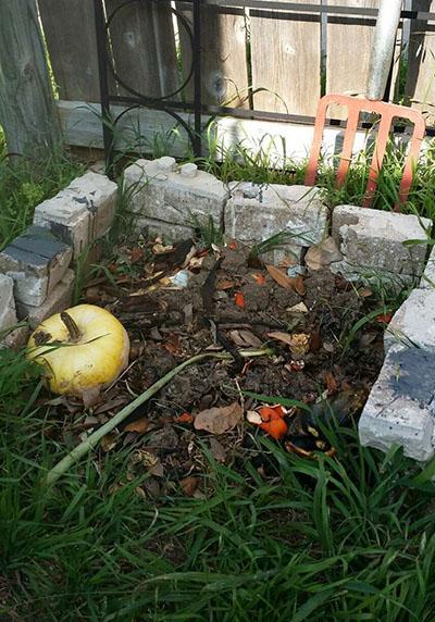 backyard compost pile next to garden