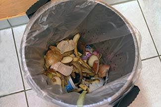 garbage-can-261935 325x216.jpg