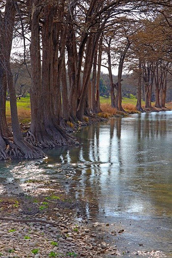 Hill Country Creek