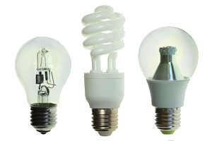 light bulbs.fw__0.png