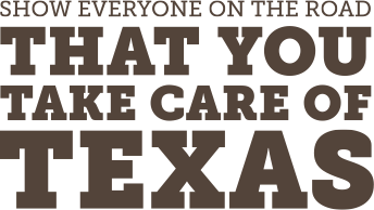 Take Care of Texas License Plate