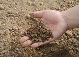 soil.fw_.png