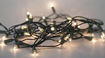tangled small Christmas lights