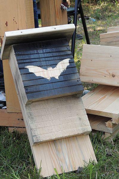 Painted Bat Box House