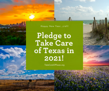 pledge to take care of texas 2021