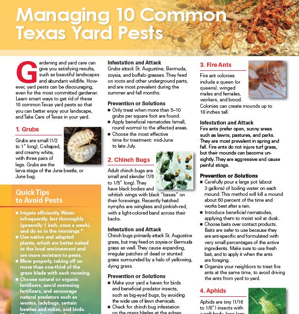 Take Care of Texas Yard Guide Top 10 pest page