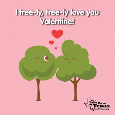 Two tall trees making kissing faces at eachother