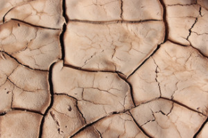 Drought cracked ground