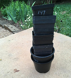 Stack of Plastic Plant Pots