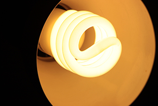Coiled CFL dark white light bulb