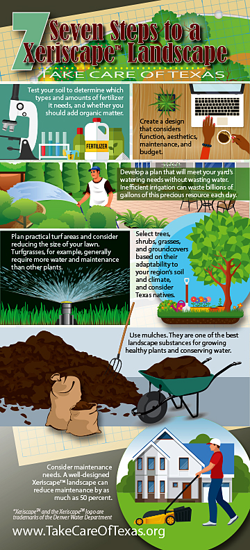 Xeriscaping Landscape Infographic