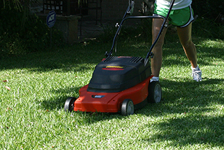 Electric Mower cutting grass on lawn