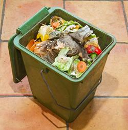 Indoor green Compost Bin