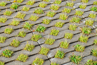 Grass pockets between permeable road pavers