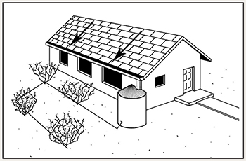 Rain barrel planning diagram with drip irrigation