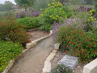 It S Here Your Ultimate Guide To Xeriscape Landscaping Take