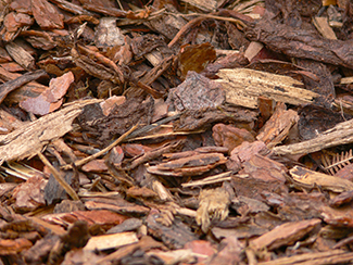 bark-mulch-958416.jpg