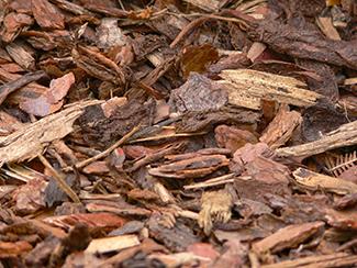 pile of bark mulch
