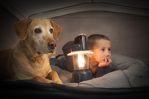 boy and dog camping.fw_.png