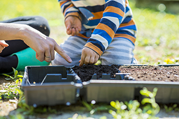 parent and child planting seeds in seedling planter