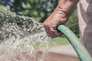man hand-watering garden with green hose