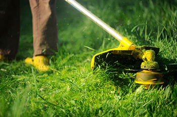 yellow weed eater cutting grass